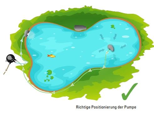 Richtige Position Pumpe